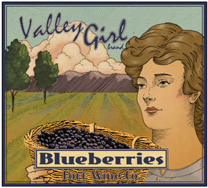 Valley Girl - Blueberries - from the Fort Wine Co.